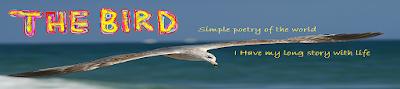https://www.thebirdali.com/2020/05/creative-commons-the-bird.html