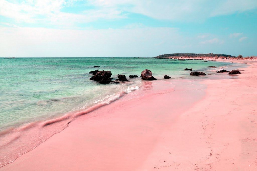 Pink sands beach Harbour Island, Bahamas