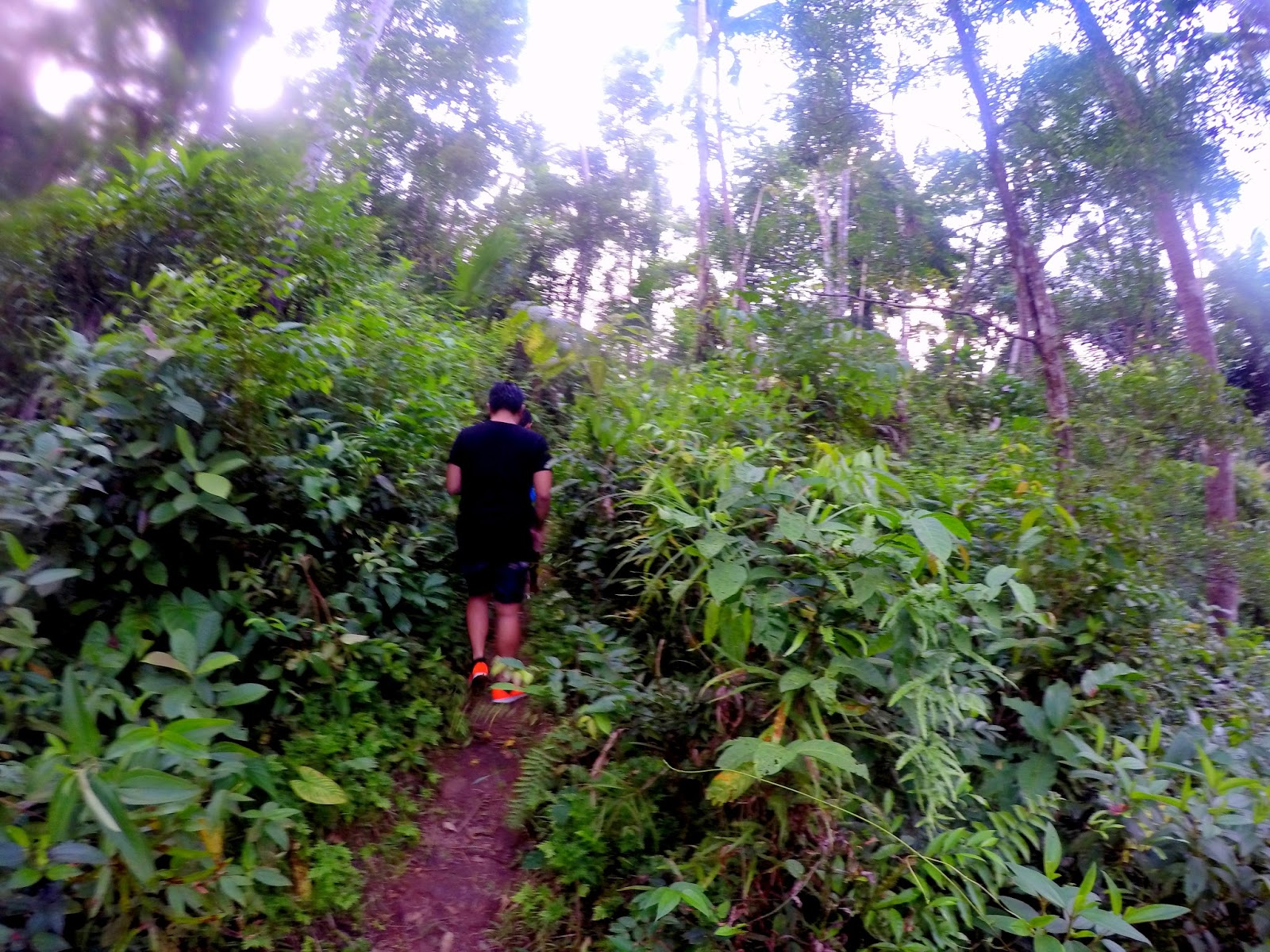 Trail run to Hulugan Falls