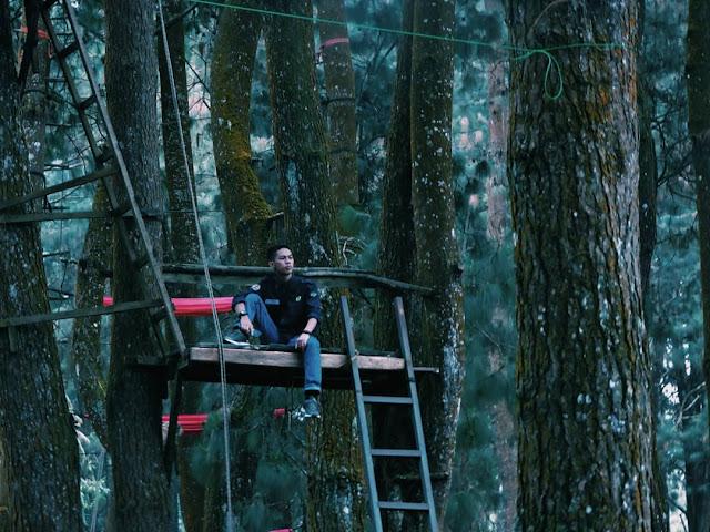 Hutan Pinus Coban Talun