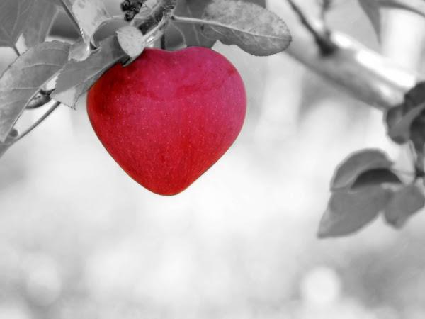 Ciri-Ciri Penyakit Jantung yang Sebaiknya Diketahui Sejak Dini