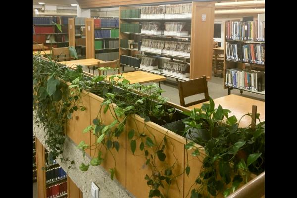 UAlberta Study Spot - St. Joe's