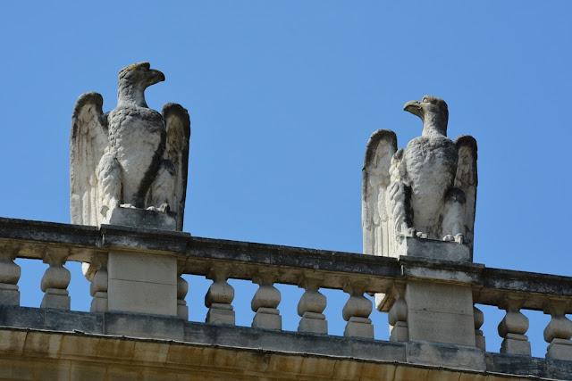 Avignon eagles
