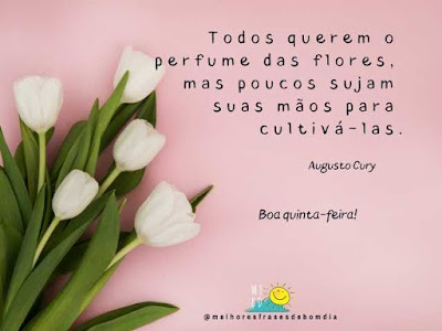 Frases de quinta-feira-Augusto Cury