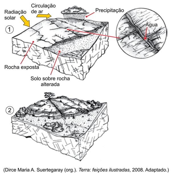 Terra feições ilustradas