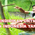 Mewujudkan Insan Indonesia Cerdas Dan Kompetitif