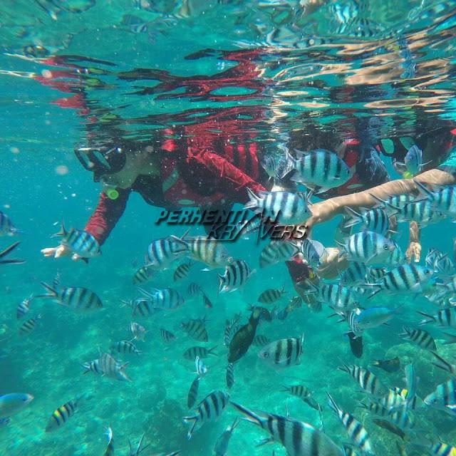 Pakej Percutian Murah Pulau Perhentian Bersama PERHENTIAN KRAVERS