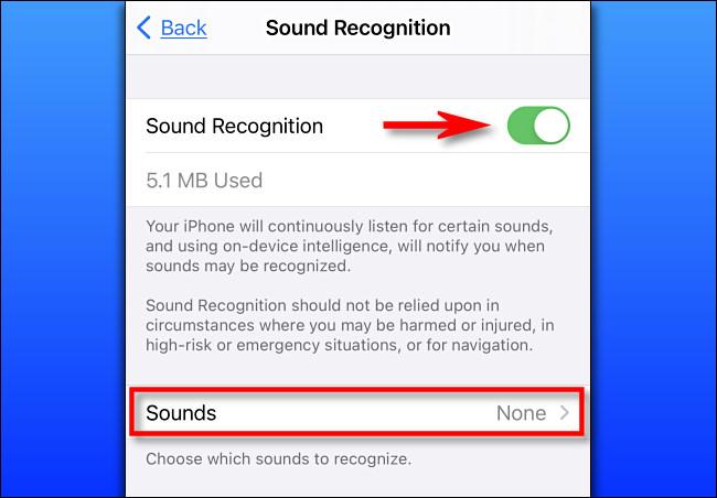 في الإعدادات على iPhone ، قم بتشغيل التعرف على الصوت.