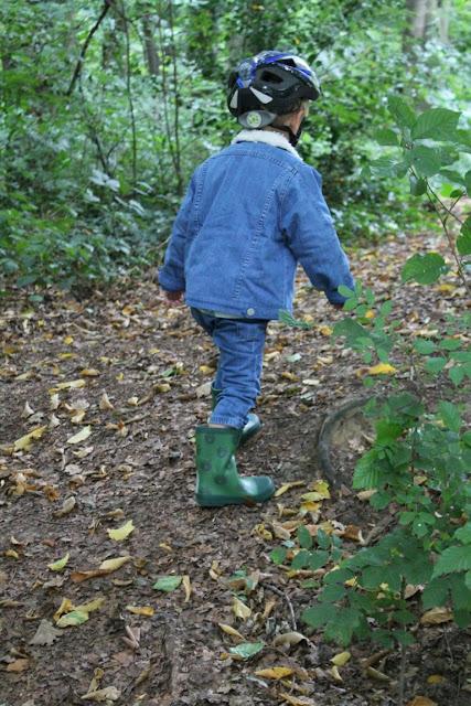 Waldspaziergang Herbst Buchtipp Was machen wir im Herbst Jules kleines Freudenhaus