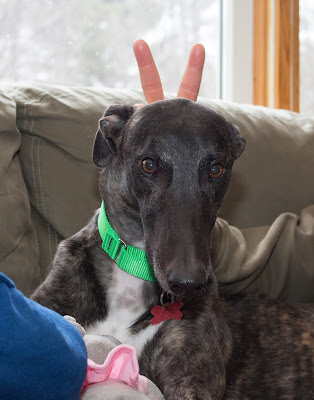 Dennis with bunny ears