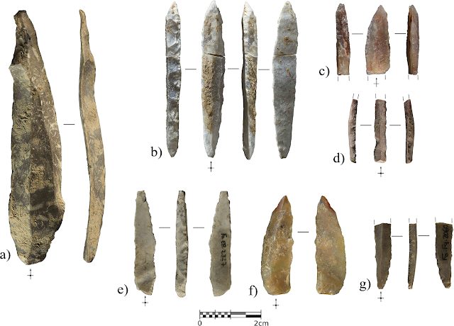 Findings in Cova Foradada change map of Iberian Neanderthal cultures