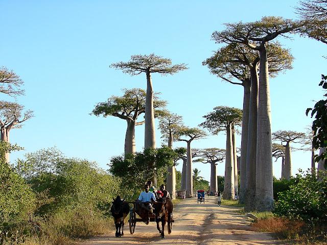 Madagascar, Mónica y Berna de Libreta Viajera