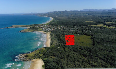 Aerial View of Proposed Development  Image: Trevor Veale Coffs Coast Advocate
