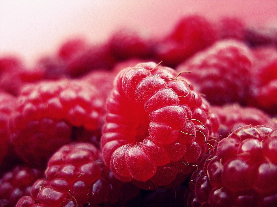 Raspberry And Rose Meringue Roulade