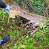 Remaja Perempuan ditemukan Meninggal Dunia didalam Parit ditutupi Pelepah Sawit, Asahan