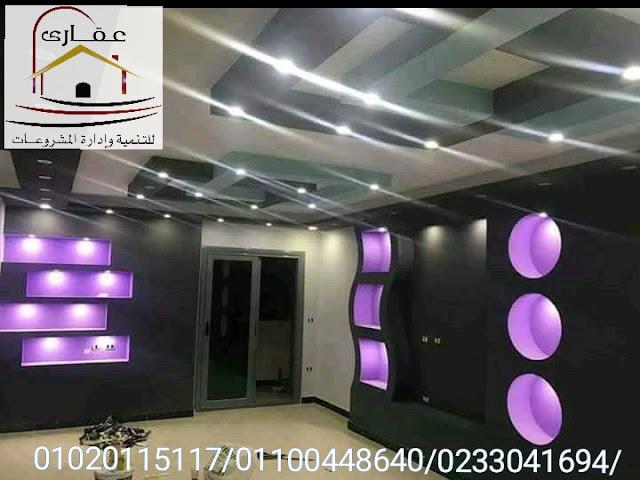 شركات تصميم ديكورات (عقارى 01020115117 )   IMG-20200123-WA0024