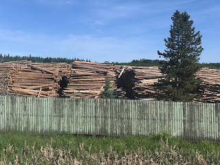 Canadian Lumber Towns