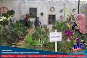 Sambil Wisata, Kamu Bisa Borong Bunga Anggrek di Kebun Jember Ini