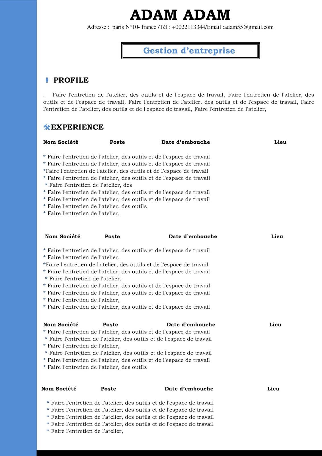 CV 2 pages au format Word gratuit 2020