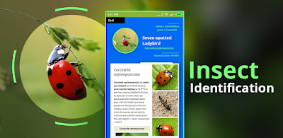 Insect Identifier Apk for Android (paid)