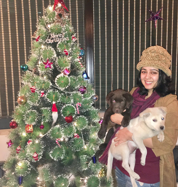Charmy Kaur christmas wishes
