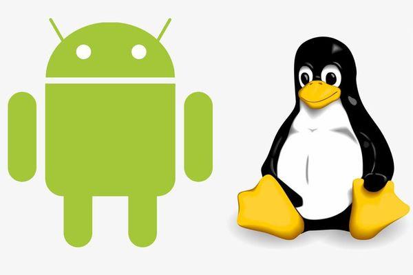 كيف تقوم بتثبيت Kali Linux بأمان على جهاز أندرويد بدون روت