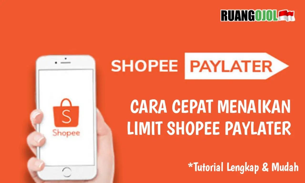 ShopeePaylater
