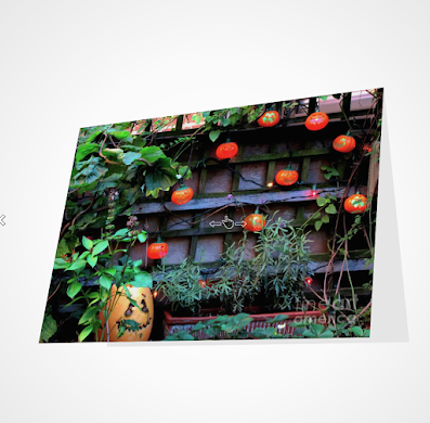"This screen-shot features a Halloween card which has an image imprinted on it. The picture was taken in my garden when decorated for Halloween. It shows Jack-O-Lantern themed outdoor lights hanging on a wooden trellis.The actual card is sized 5"" by 7"" and  can be purchased via Fine Art America (AKA FAA).  They produce the cards on digital offset printers using 100 lb paper that has a UV protectant. The image is semi-gloss and the inside of the card is matte and blank so one can write a message, but if you prefer, FAA can customize any text or message that you want to include. Purchase info is @ https://fineartamerica.com/featured/jackolanterns-sunbathing-patricia-youngquist.html?product=greeting-card"