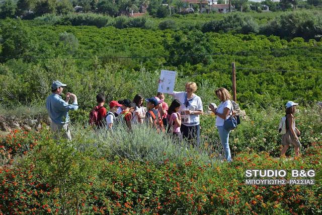 Ξεκίνησαν οι δράσεις «Πράσινες Πολιτιστικές Διαδρομές» στην Αρχαία Ασίνη (βίντεο)