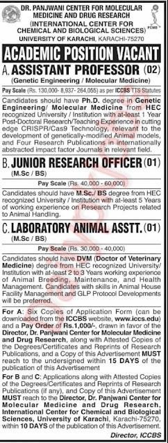New Jobs University of Karachi 2021
