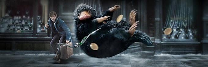 DVD/Blu-Ray de Animais Fantásticos e Onde Habitam ganha data de lançamento no Brasil