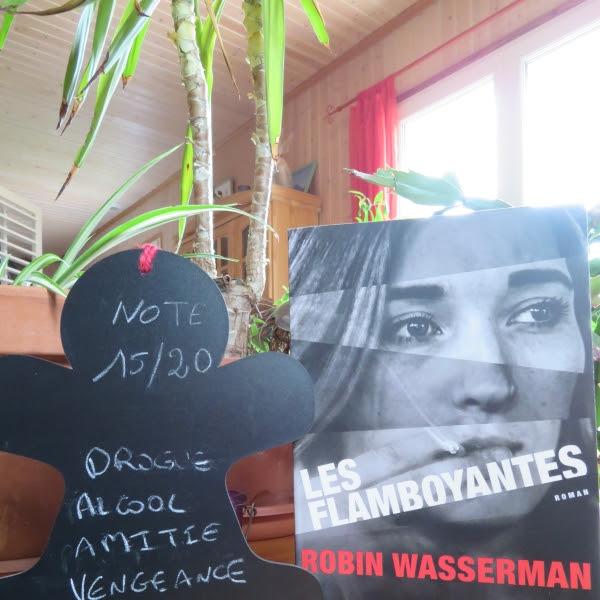 Les flamboyantes de Robin Wasserman
