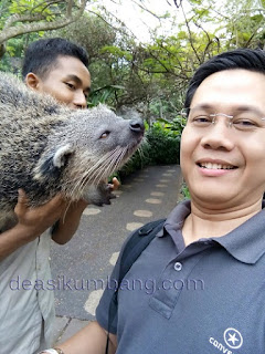 Admission Prices And Package Bali Safari & Marine Park