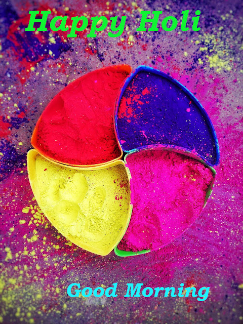 Good Morning Wish You Happy Holi.
