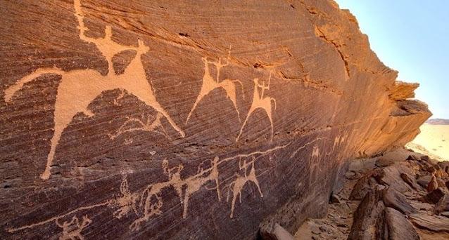 اكتشاف جديد من عصور ما قبل التاريخ بالمغرب