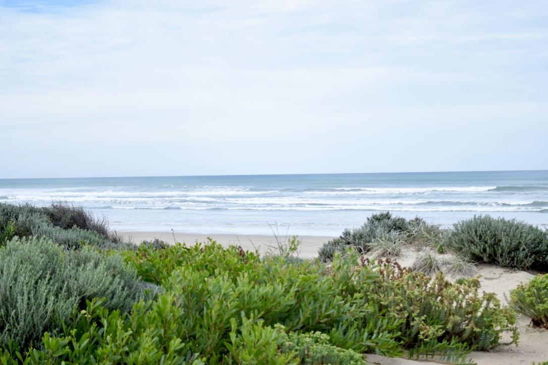 Fleurieu Peninsula Australia