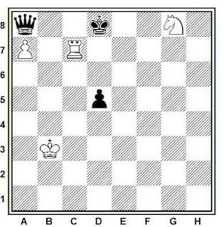 Estudio artístico de ajedrez de G. Nadareishvili de torre y caballo contra dama
