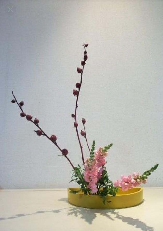 Ikabena Flower Arrangement Guidelines