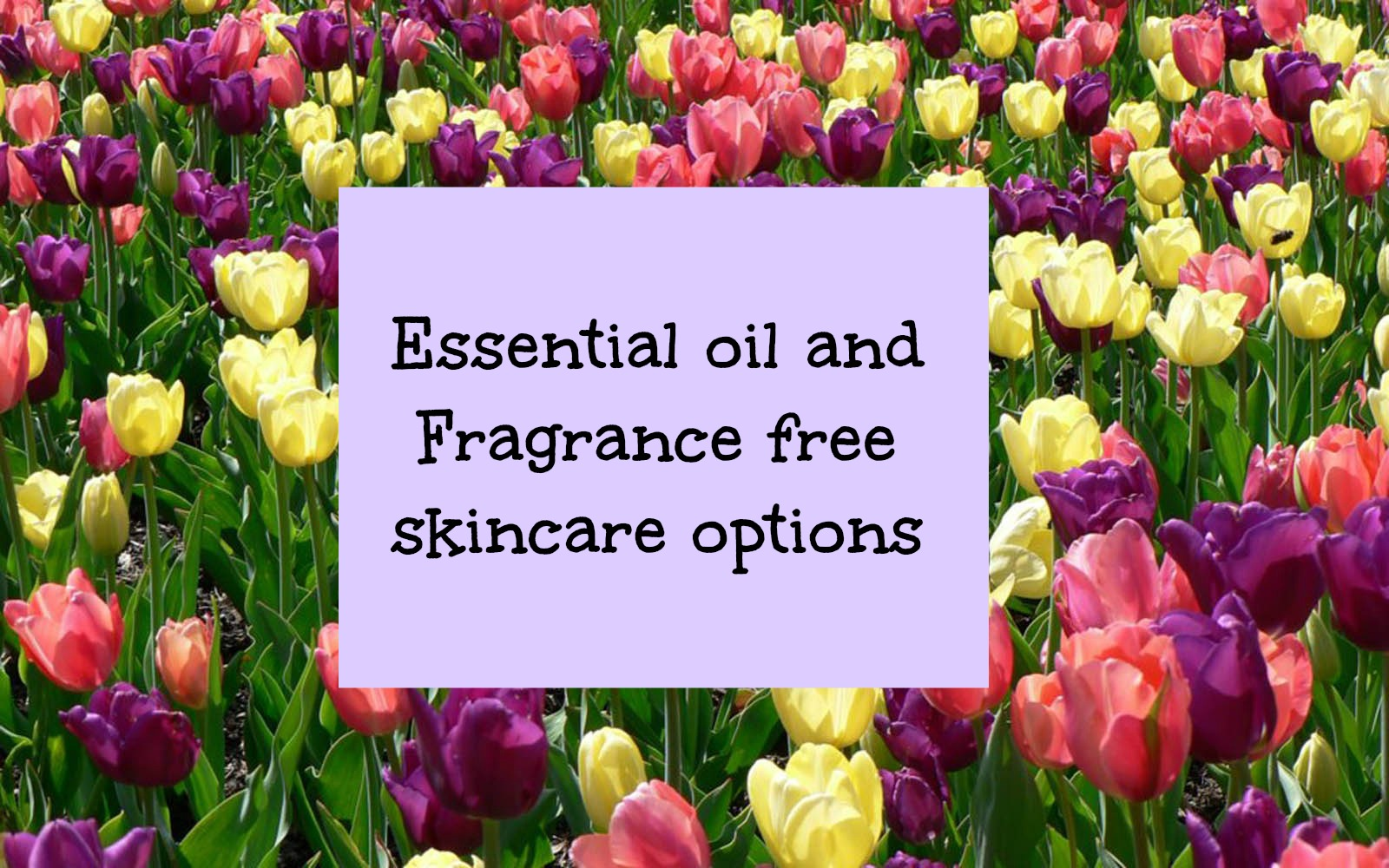 Essential oil and Fragrance free skincare options