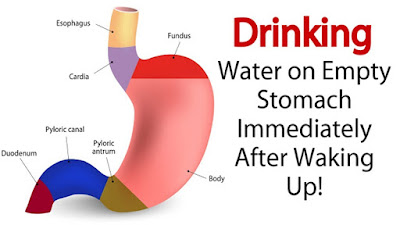 Drink Water On An Empty Stomach Immediately After Waking Up