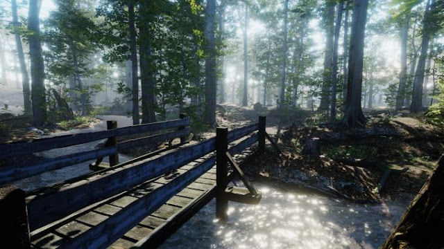 The House in the Forest a game with elements of adventure and walking, has a first-person view and beautiful graphics.