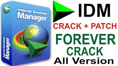 IDM Internet Download Manager 6.35 Build 3 Crack Download