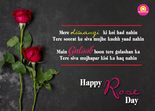 Download and Share Rose Day Quotes, WhatsApp Messages and Greetings 2020