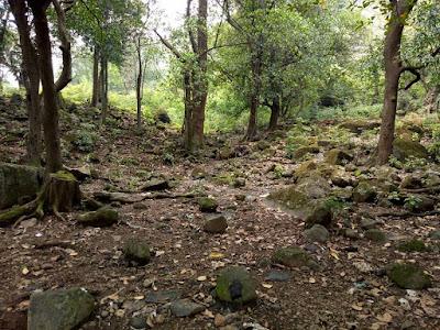 Ananthagiri Hills Trek