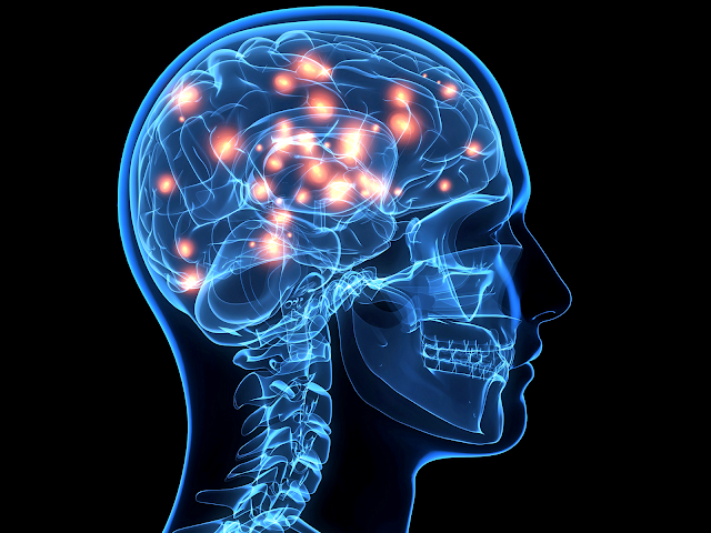 Sudah Di Buktikan Oleh Saint, Inilah Manfaat Besar Dari Sujud Untuk Kesehatan Otak