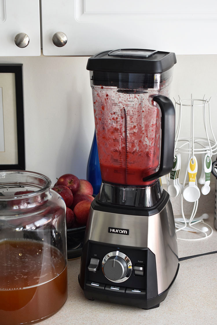 Hurom Hexa Power High Speed Blender - Review