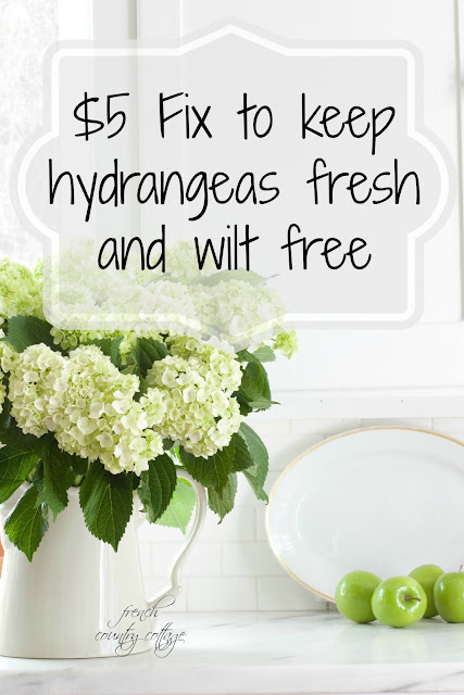 hydrangeas fresh, no wilt, secret fix
