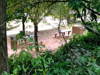 Parque Lions Club Tucuruvi - Área de Piquenique