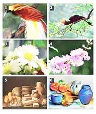 53 Gambar Alam Benda Dan Ciri Cirinya Paling Bagus