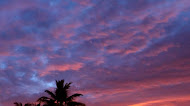 Tropical Sunset lake mobile wallpaper